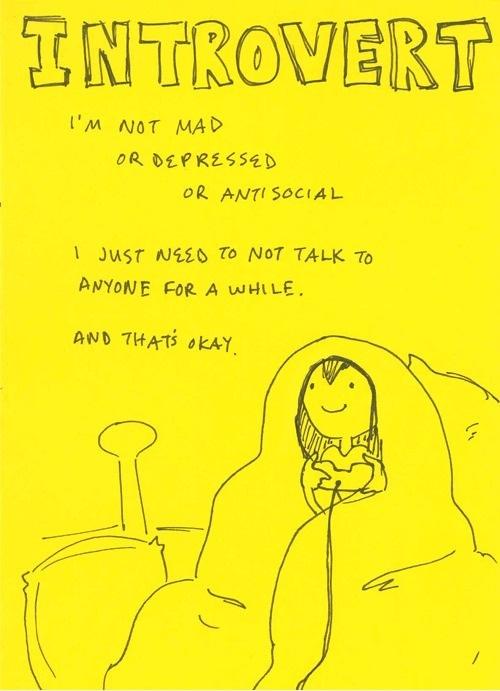 Introvert like a boss