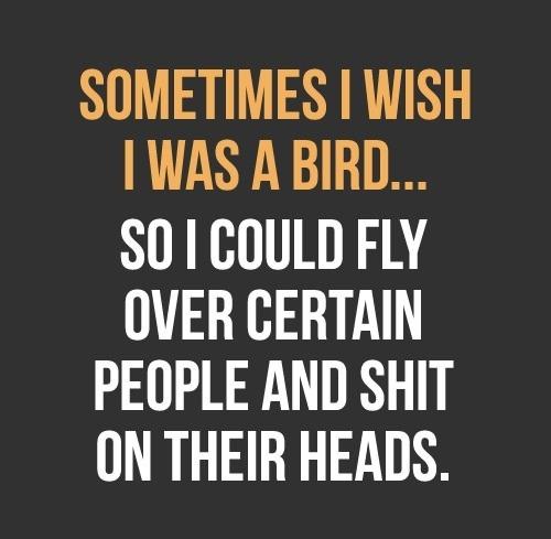 Sometimes I wish