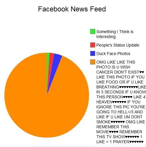 FB Newsfeed