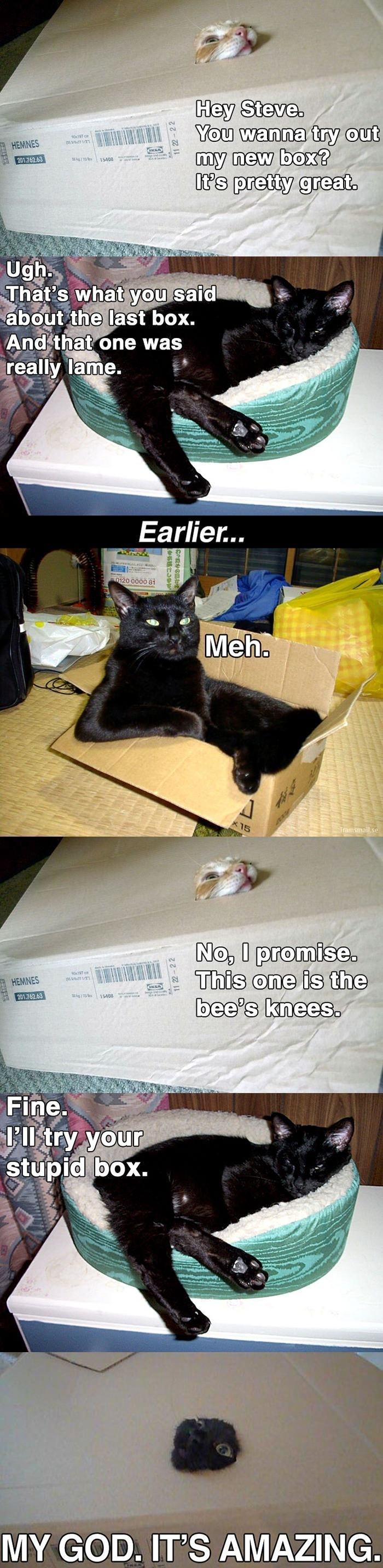 Wanna try my new box?