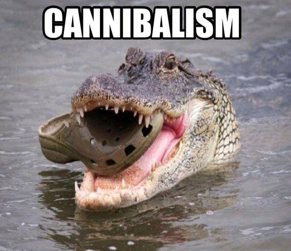 Cannibalism