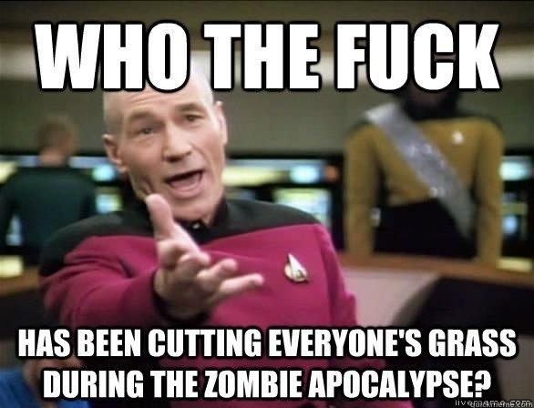 Every zombie movie/show