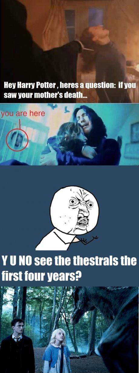Hey Harry Potter..