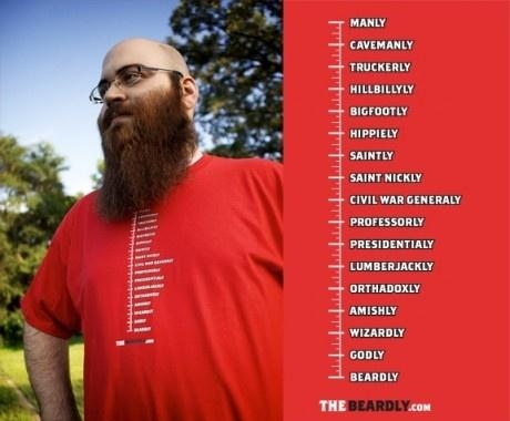 Beard measurement system