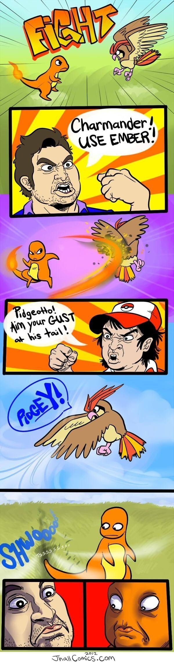 Epic Pokemon Fight