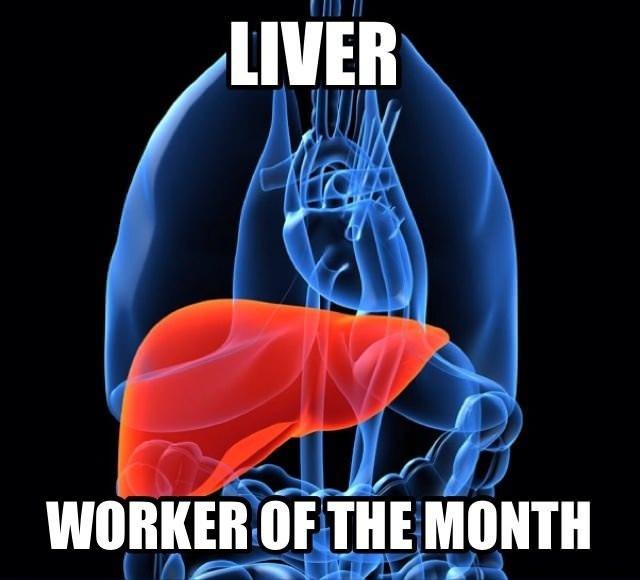 Good Guy Liver