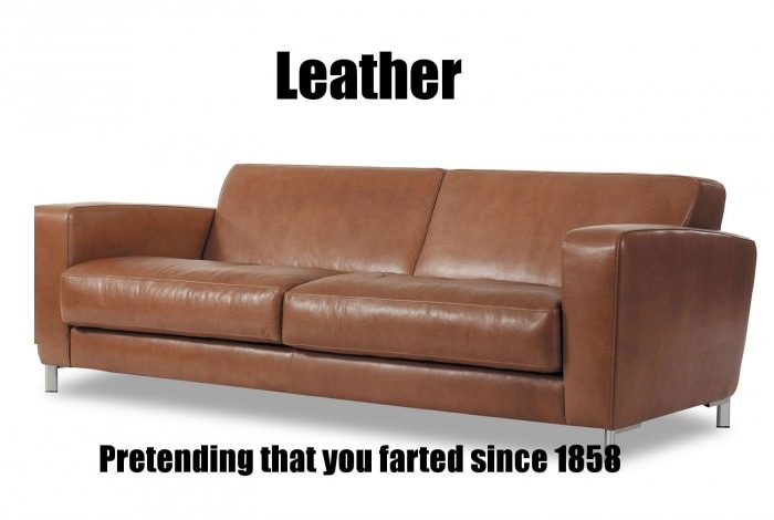 Leather sofa farting