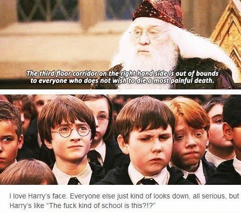 Dumblerdore's advice