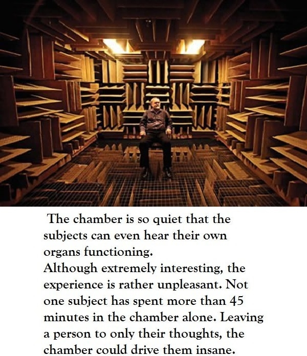 The world's quietest room