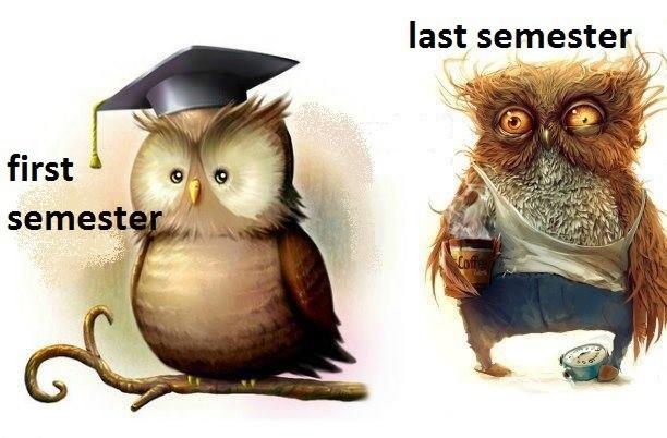 First & last semester