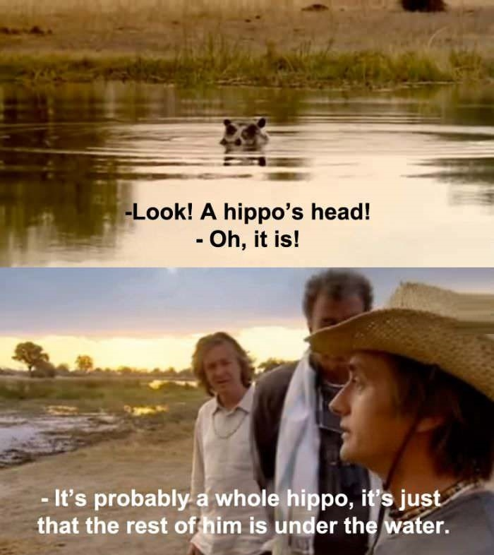 It's probably a whole hippo