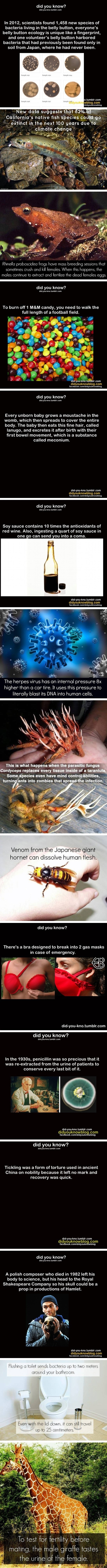 Facts that will horrify you