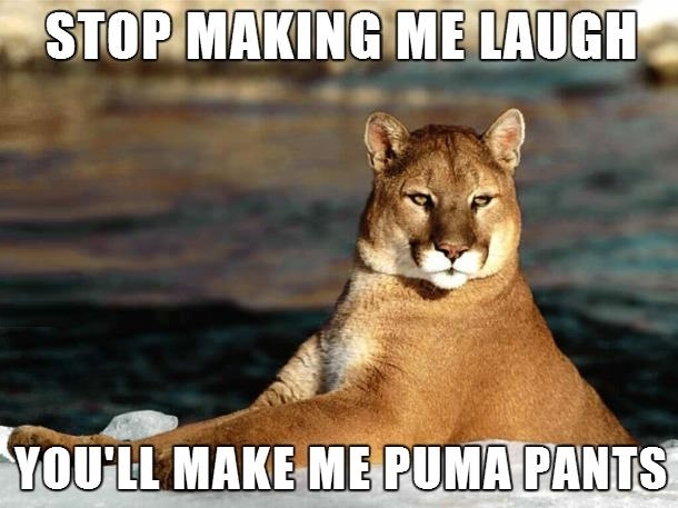 Bad Pun Puma