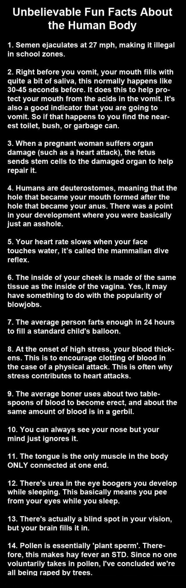 Facts about the body