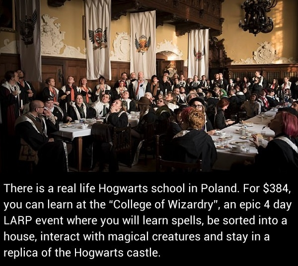 Time to become a wizard!