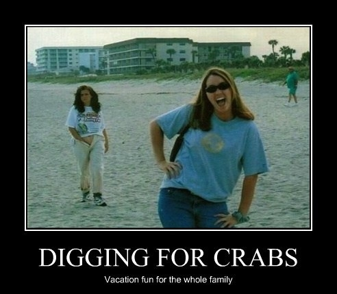Digging for crabs