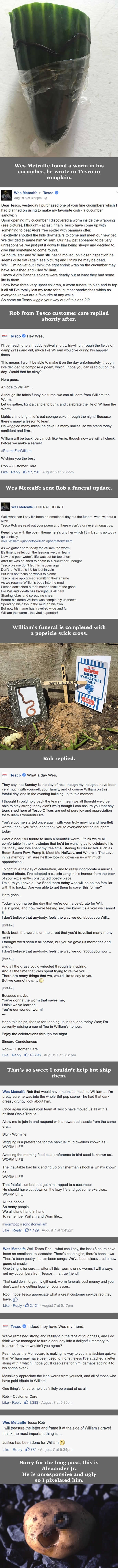 Man held funeral for worm found in cucumber