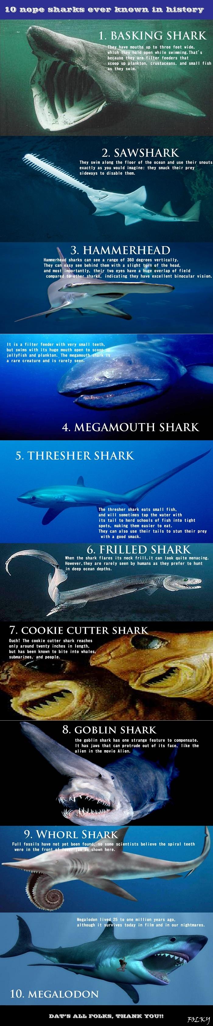 Nope sharks