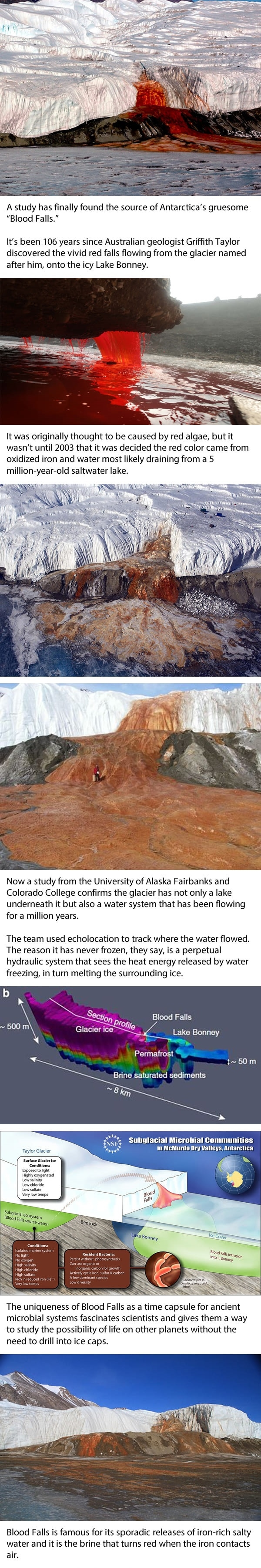 Scientists have solved the mystery of Antarctica's Blood Falls