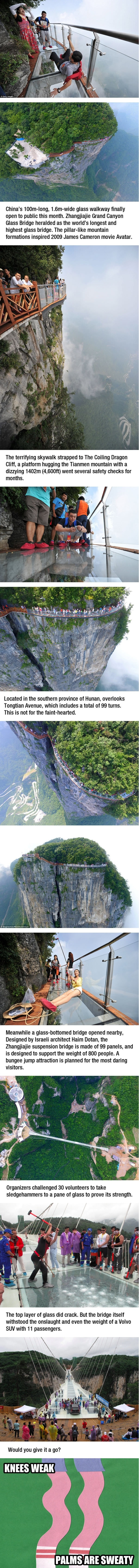 Terrifying 4,600ft glass skywalk in China