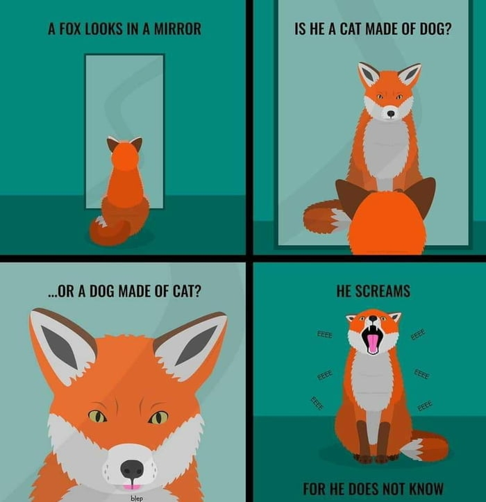 A fox is just cat software on dog hardware