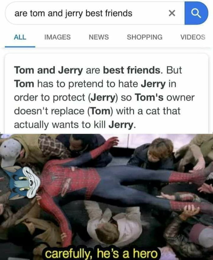 Are Tom and Jerry best friends?