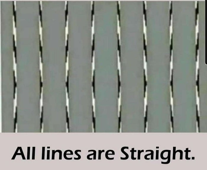 All lines are straight