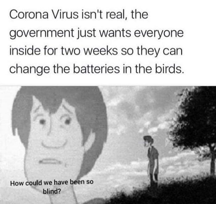 Coronavirus isn't real