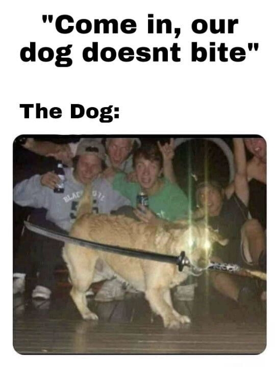 Dog doesn't bite