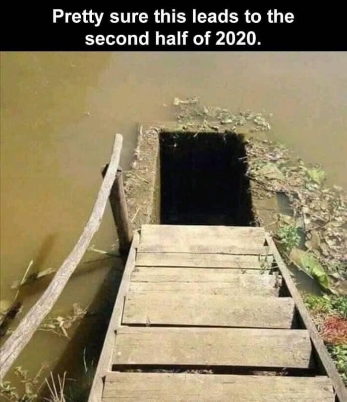 Enter the second half of 2020