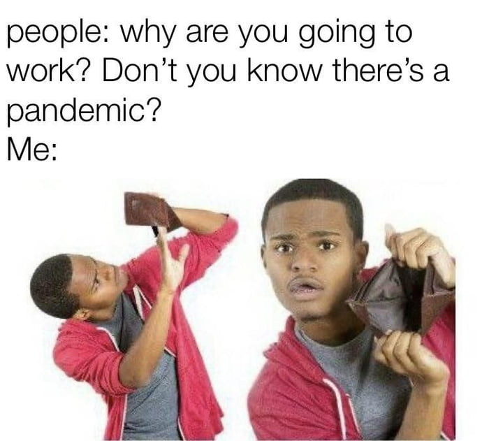 Why are you going to work?