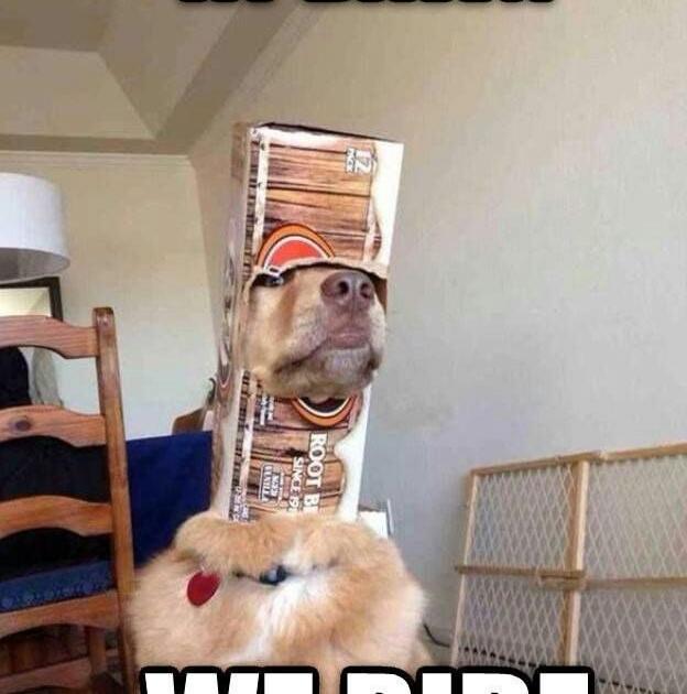 Memebase  All Your Memes In Our Base  Funny Memes