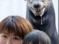 Naughty Seal