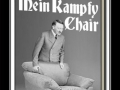 Fetch.. THE KAMPFY CHAIR!