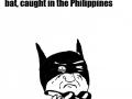 MOTHER OF BATS!