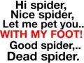 Hi Spider!