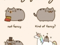 How to be a fancy