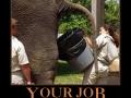 Wanna Change Jobs?