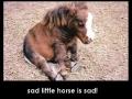 Cheer up kiddo!