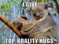 Right Koala