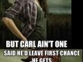 Walking Dead Compilation