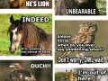 All the animal puns!