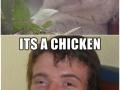Yeah, it's a chicken!