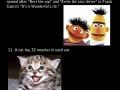 20 weird facts