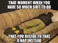 College students understand