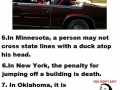 10 dumb laws in the USA