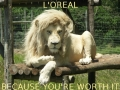 Because you're worth it