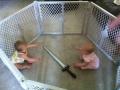 Worst babysitter!