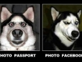 Passport and FB Photo