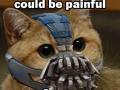 Bane Kitty